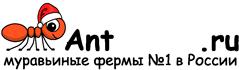 Муравьиные фермы AntFarms.ru - Липецк